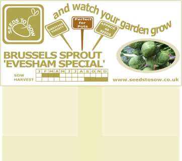 Seed Card - Christmas Card - Grow Your Own Brussels Sprouts - Seeds to Sow Limited