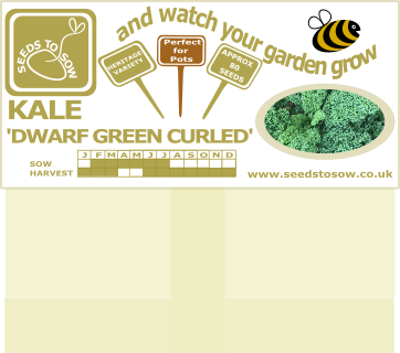 Kale Dwarf Green Curled - Seeds to Sow Limited