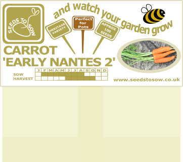 Carrot Early Nantes 2 - Seeds to Sow Limited