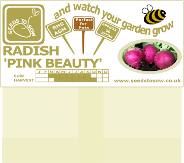 Radish Pink Beauty - Seeds to Sow Limited