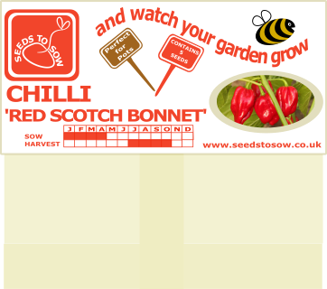 Chilli Red Scotch Bonnet - Seeds to Sow Limited