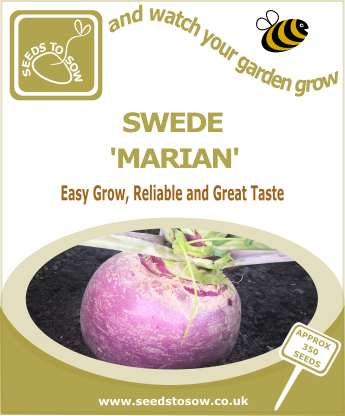 Swede Marian - Seeds to Sow Limited