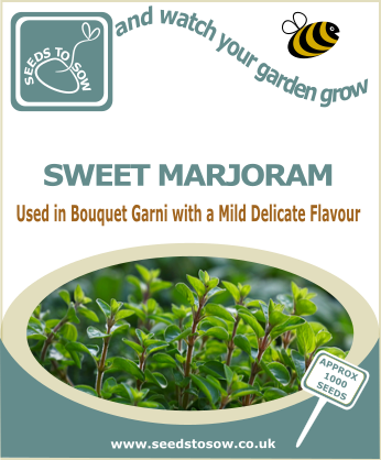 Sweet Marjoram - Seeds to Sow Limited