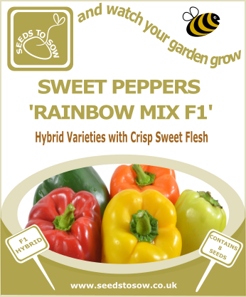 Sweet Peppers Rainbow Mix F1