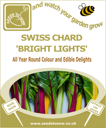 Swiss Chard Bright Lights - Seeds to Sow Limited