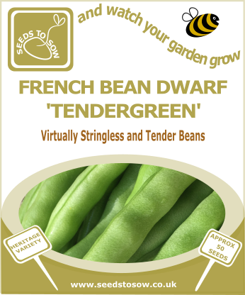 French Bean Dwarf Tendergreen - Seeds to Sow Limited