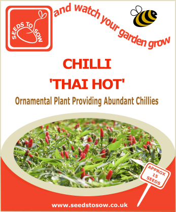 Chilli Thai Hot - Seeds to Sow Limited