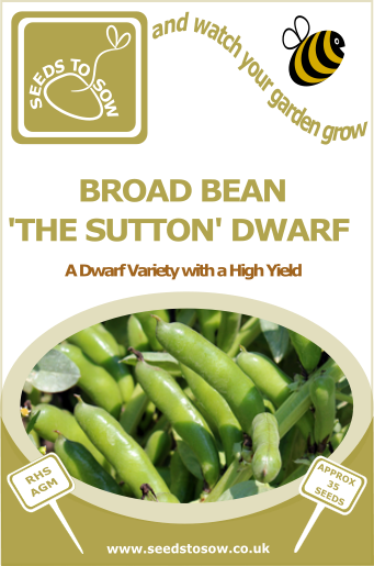 Broad Bean Sutton Dwarf - Seeds to Sow Limited