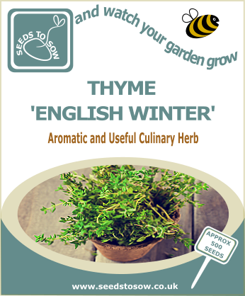 Thyme - English Winter - Seeds to Sow Limited
