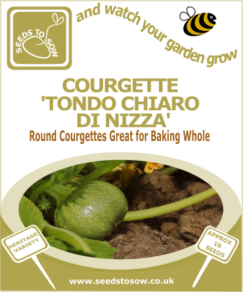 Courgette Tondo Chiaro Di Nizza - Seeds to Sow Limited