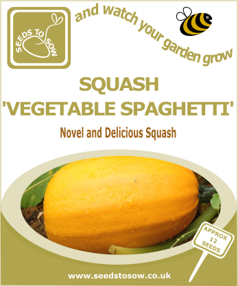 Squash Vegetable Spaghetti - Seeds to Sow Limited