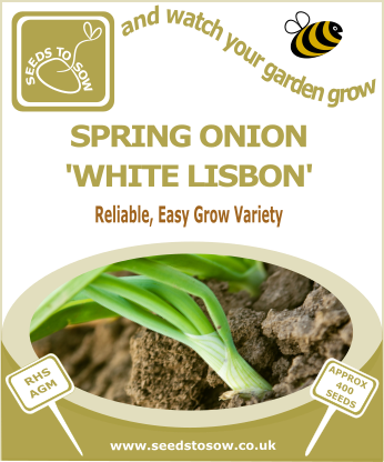 Spring Onion White Lisbon - Seeds to Sow Limited