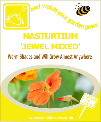 Nasturtium - Jewel Mixed - Seeds to Sow Limited