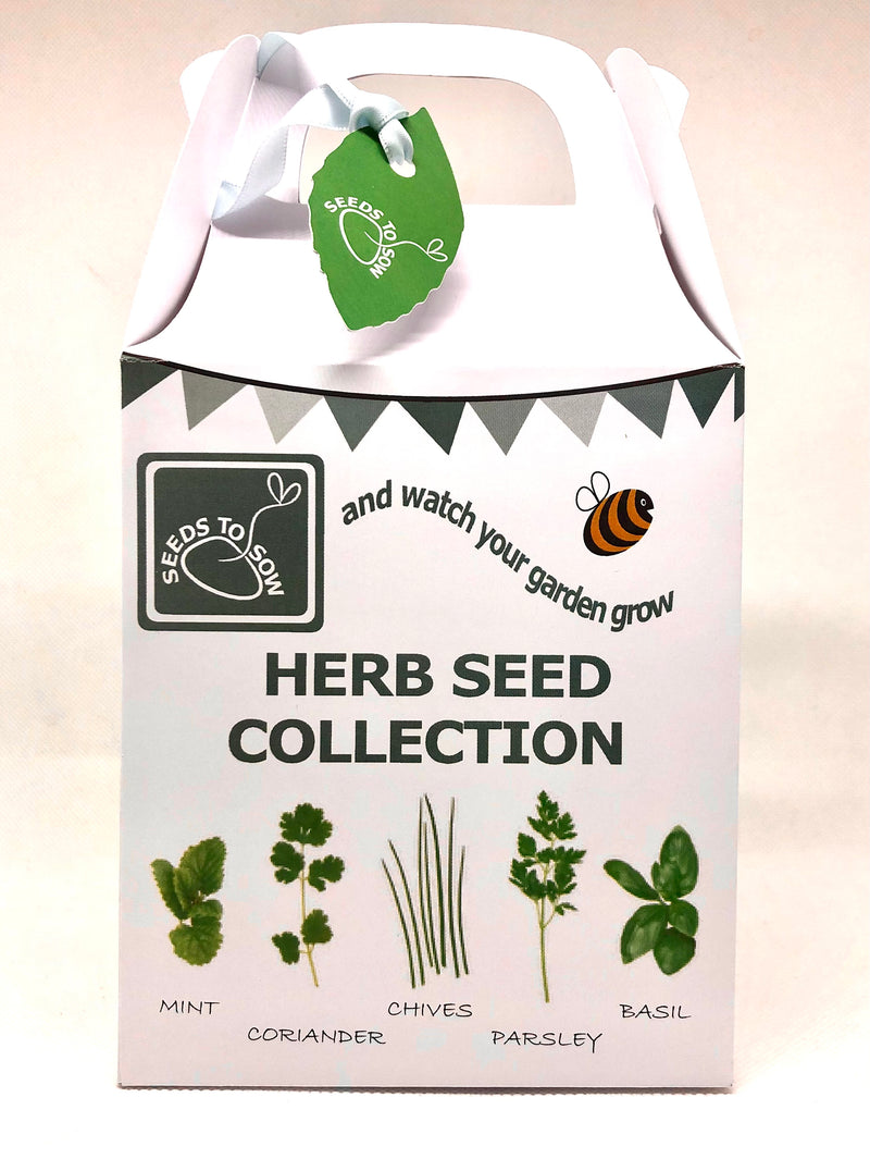 Seed Box - Herb Seed Collection - Seeds to Sow Limited