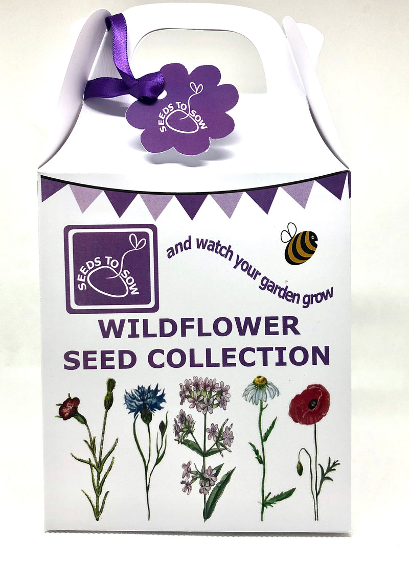 Seed Box - Wildflower Seed Collection - Seeds to Sow Limited