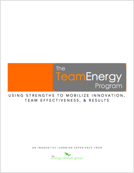 Team Energy Kit
