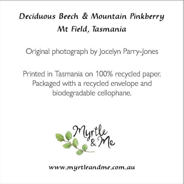 Deciduous Beech & Mountain Pinkberry- Christmas Card-Card-Myrtle & Me