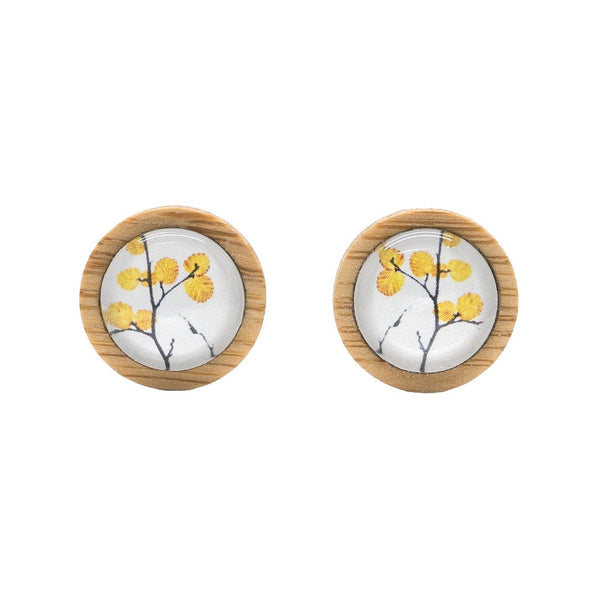 Deciduous Beech - Stud Earrings