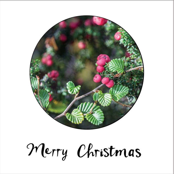Deciduous Beech & Mountain Pinkberry- Christmas Card - Myrtle & Me
