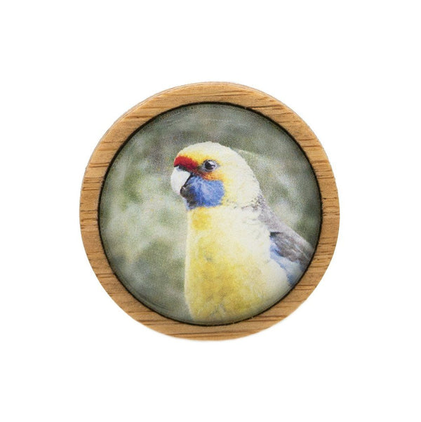 Green Rosella - Brooch Handmade Bamboo Wooden Jewellery Myrtle & Me Tasmanian Design Eco Friendly Nature Gift