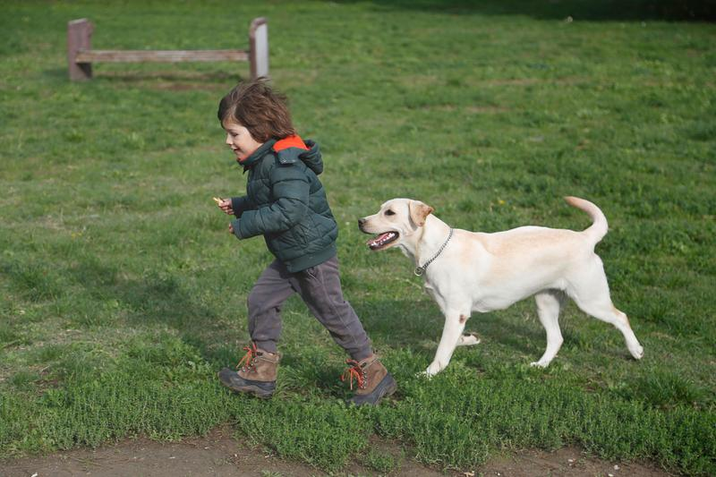 Man's Best Friend Can Also Be Baby's Best Friend: What to Know About Dogs and Babies