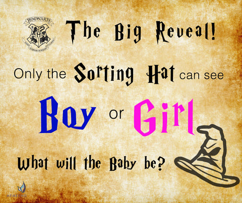 Harry Potter theme Gender Reveal Party