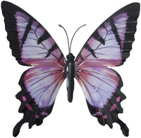 pink/black butterfly