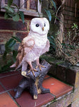 Other Garden Ornaments - Barn Owl Garden Ornament