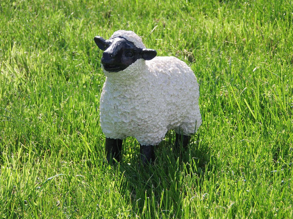 Other Garden Ornaments - Lamb With Black Face Garden Ornament