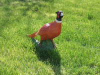 Other Garden Ornaments - Pheasant Garden Ornament