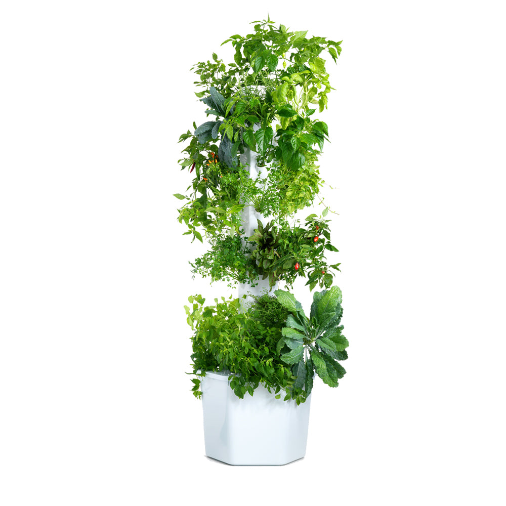 Aerospring Garden Pro - 12 sections, 36 plants