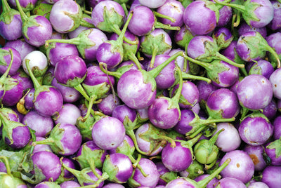 Thai Eggplant - Solanum melongena Subscription