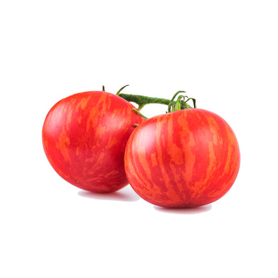 Indeterminate Tomatoes - Solanum lycopersicum