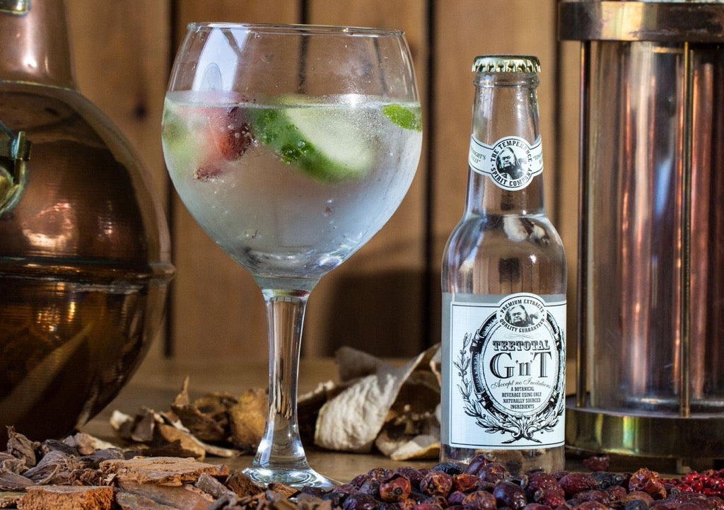 The Perfect Gin For Dry January