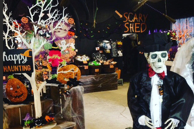 Dare you enter the spooktacular scary shed?