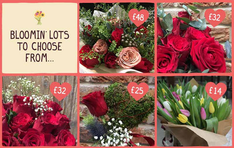 Bloomin Loads to Choose From