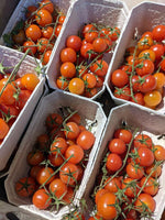 Cherry Tomatoes on the vine - Punnet