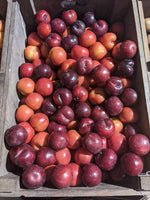 Red Plums, per 300g