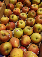 Coxes Apples