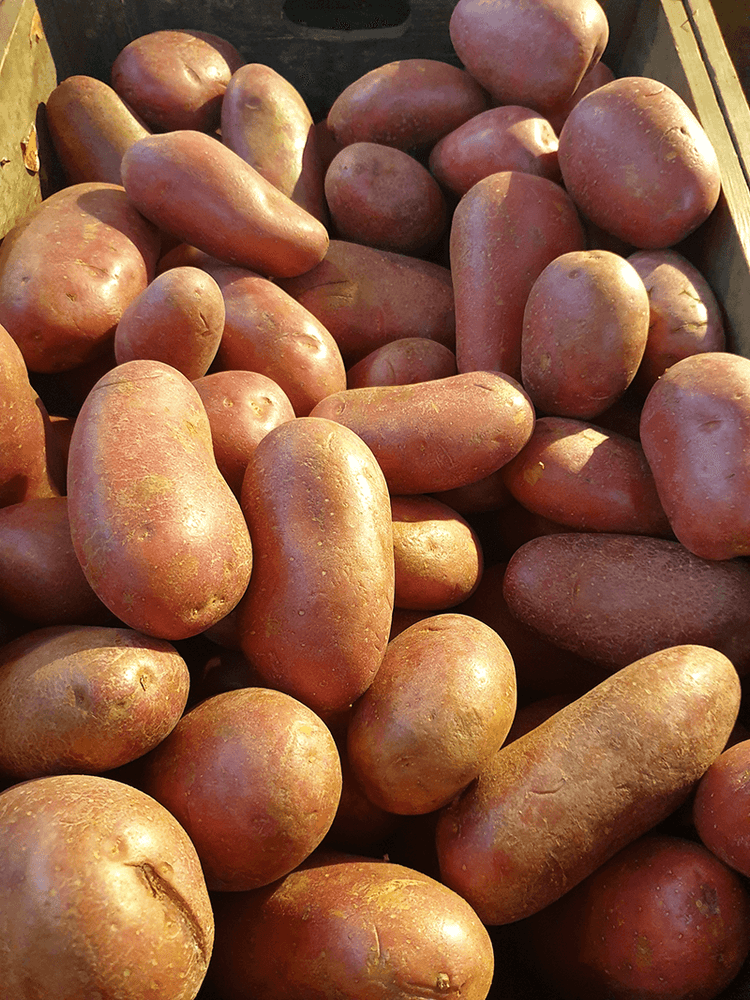 Potatoes Washed Red Loose, per 500g
