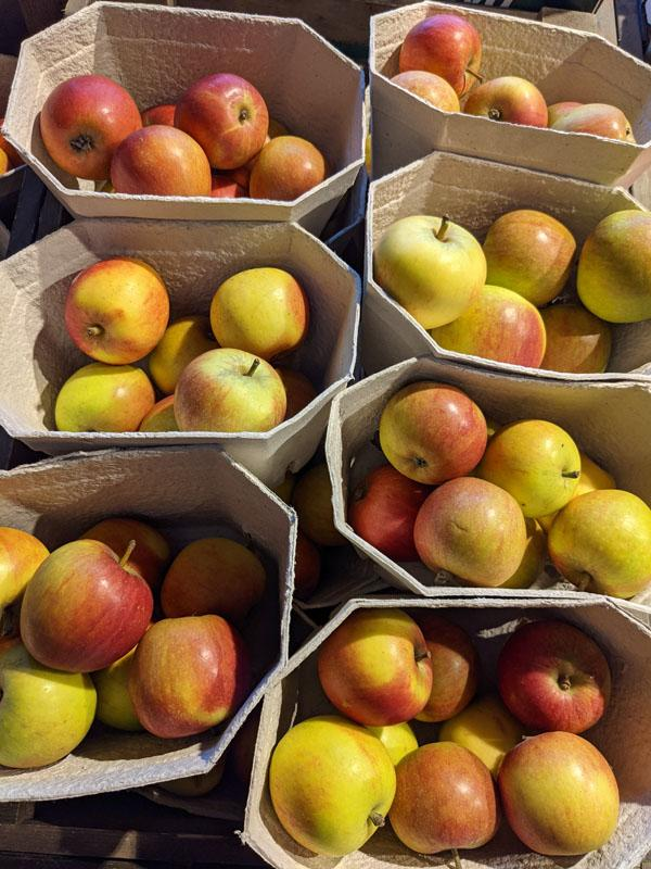 Coxes Apples Punnet