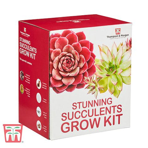 Thompson & Morgan Stunning Succulents Grow Kit