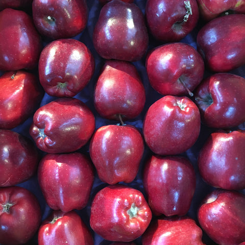 Red Delicious Apple - Each