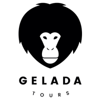 Fly Gelada - ZAM Ltd. 515595205