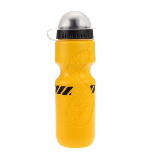 Essential 650ML Portable Outdoor Bottle