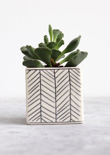 Elizabeth Benotti Ceramics | Square Herringbone Planter | Small | White