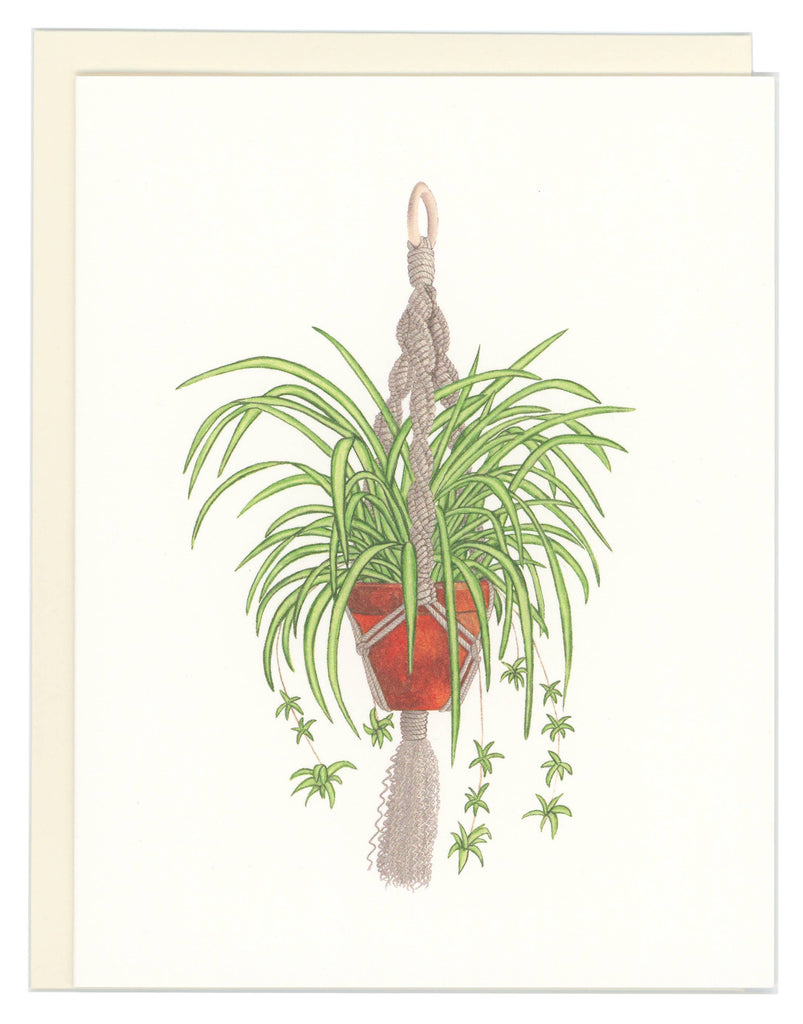 Good Postage - Spider Plant Greeting Card