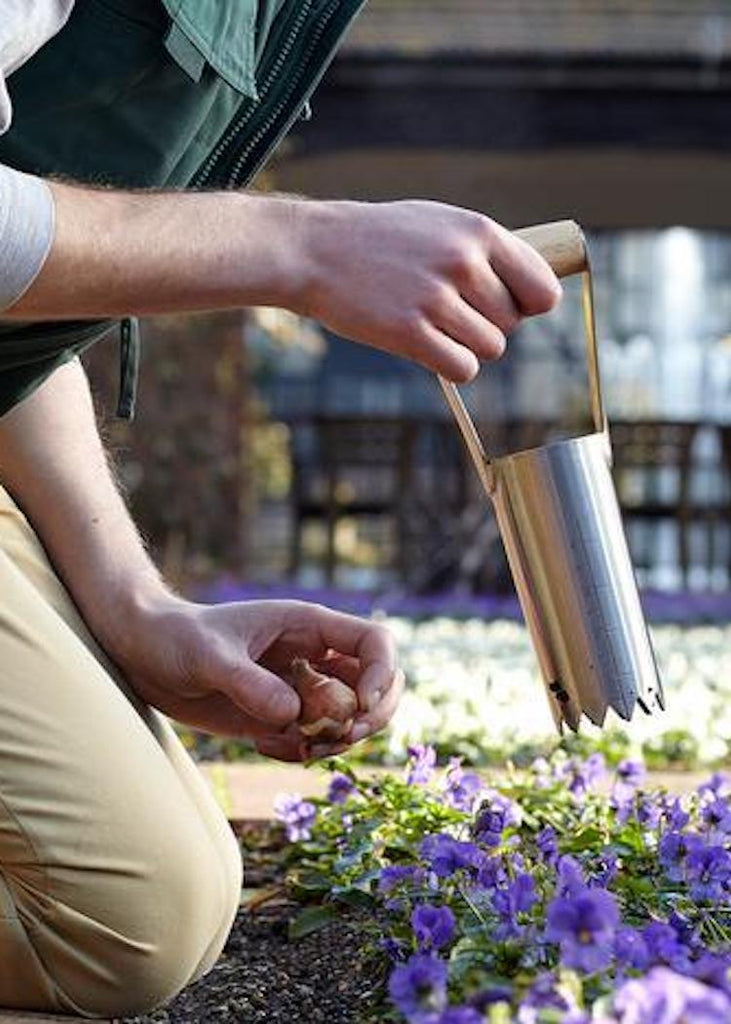 Stainless Bulb Planter
