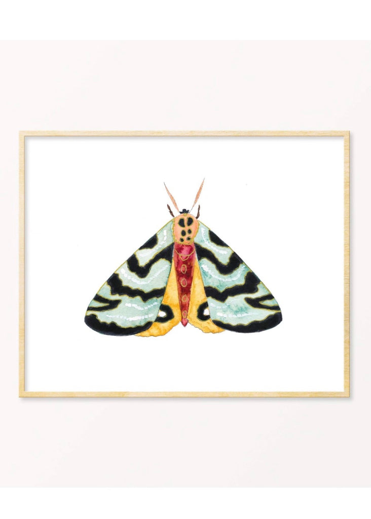 Snoogs & Wilde Art | Moth #11 Art Print