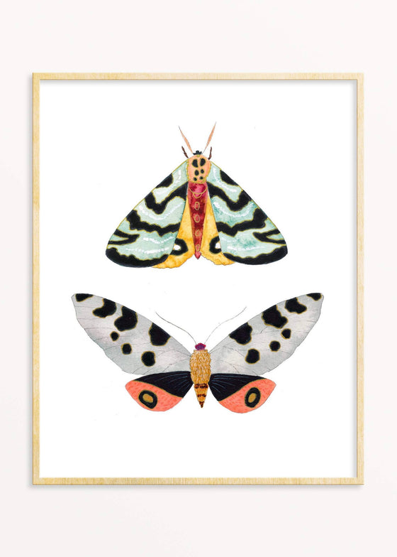 Snoogs & Wilde Art | 2 Moths #4 Art Print